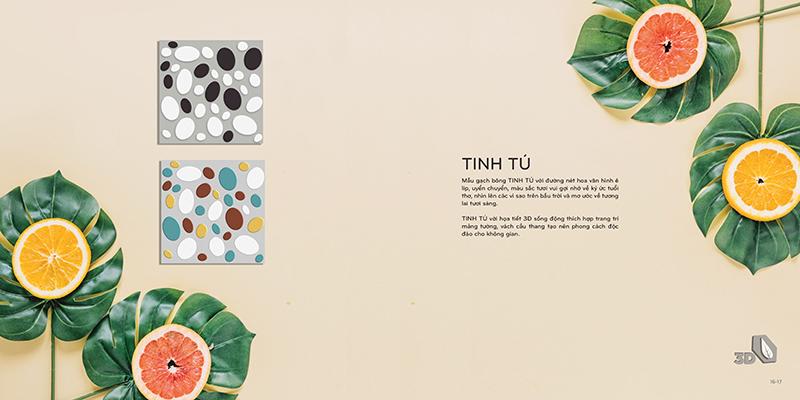 Mẫu gạch bông Đồng Tâm